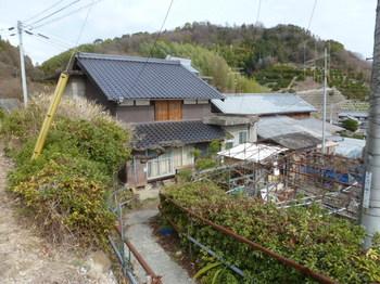 野々江 (6).JPG